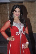 Arjumman Mughal at Ya Rab film launchin Mumbai on 23rd Jan 2014 (16)_52e20d0ec237f.JPG