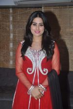 Arjumman Mughal at Ya Rab film launchin Mumbai on 23rd Jan 2014 (18)_52e20d03e1f84.JPG