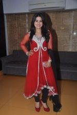 Arjumman Mughal at Ya Rab film launchin Mumbai on 23rd Jan 2014 (19)_52e20d04472b2.JPG