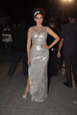 Aditi Rao Hydari at Filmfare Awards Red Carpet 2014 on 24th Jan 2014 (149)_52e395d85373b.JPG