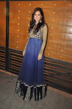 Bruna Abdullah at Filmfare Awards Red Carpet 2014 on 24th Jan 2014 (57)_52e39814f14f8.JPG