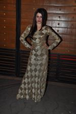 Kainaat Arora at Filmfare Awards Red Carpet 2014 on 24th Jan 2014 (41)_52e39966ebd9d.JPG