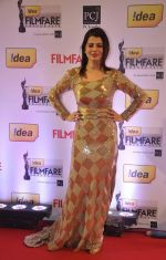 Kainaat Arora walked the Red Carpet at the 59th Idea Filmfare Awards 2013 at Yash Raj_52e3996cdb469.jpg