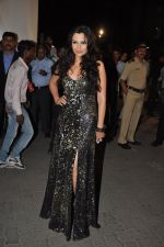 Mrinalini Sharma at Filmfare Awards Red Carpet 2014 on 24th Jan 2014 (41)_52e39daf575ff.JPG