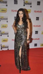 Mrinalini Sharma walked the Red Carpet at the 59th Idea Filmfare Awards 2013 at Yash Raj_52e39db0ab16e.jpg