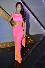 Malaika Arora Khan stunning in a shivan naresh saree in Mumbai on 25th Jan 2014 (10)_52e4b439ae5c4.JPG