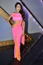 Malaika Arora Khan stunning in a shivan naresh saree in Mumbai on 25th Jan 2014 (11)_52e4b43a13f8f.JPG