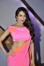 Malaika Arora Khan stunning in a shivan naresh saree in Mumbai on 25th Jan 2014 (13)_52e4b43ad349f.JPG