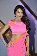 Malaika Arora Khan stunning in a shivan naresh saree in Mumbai on 25th Jan 2014 (14)_52e4b43b392b0.JPG