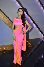 Malaika Arora Khan stunning in a shivan naresh saree in Mumbai on 25th Jan 2014 (16)_52e4b43bed451.JPG