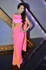 Malaika Arora Khan stunning in a shivan naresh saree in Mumbai on 25th Jan 2014 (17)_52e4b43c58efe.JPG