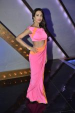 Malaika Arora Khan stunning in a shivan naresh saree in Mumbai on 25th Jan 2014 (18)_52e4b43cba16d.JPG