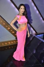 Malaika Arora Khan stunning in a shivan naresh saree in Mumbai on 25th Jan 2014 (19)_52e4b43d1fdca.JPG