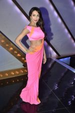 Malaika Arora Khan stunning in a shivan naresh saree in Mumbai on 25th Jan 2014 (21)_52e4b43ddf206.JPG