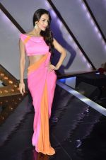Malaika Arora Khan stunning in a shivan naresh saree in Mumbai on 25th Jan 2014 (24)_52e4b43f06849.JPG