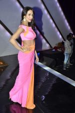 Malaika Arora Khan stunning in a shivan naresh saree in Mumbai on 25th Jan 2014 (25)_52e4b43f5fba0.JPG