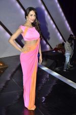 Malaika Arora Khan stunning in a shivan naresh saree in Mumbai on 25th Jan 2014 (26)_52e4b43fbb3cb.JPG
