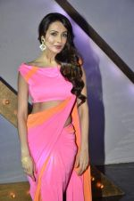 Malaika Arora Khan stunning in a shivan naresh saree in Mumbai on 25th Jan 2014 (28)_52e4b4407d807.JPG