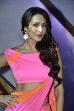 Malaika Arora Khan stunning in a shivan naresh saree in Mumbai on 25th Jan 2014 (29)_52e4b46b46945.JPG