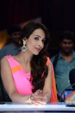 Malaika Arora Khan stunning in a shivan naresh saree in Mumbai on 25th Jan 2014 (52)_52e4b448ec39a.JPG