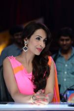 Malaika Arora Khan stunning in a shivan naresh saree in Mumbai on 25th Jan 2014 (53)_52e4b44950c23.JPG