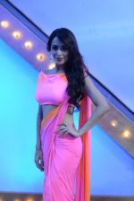 Malaika Arora Khan stunning in a shivan naresh saree in Mumbai on 25th Jan 2014 (58)_52e4b44b2899f.JPG