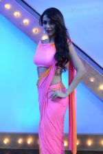 Malaika Arora Khan stunning in a shivan naresh saree in Mumbai on 25th Jan 2014 (60)_52e4b44bdc979.JPG