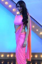 Malaika Arora Khan stunning in a shivan naresh saree in Mumbai on 25th Jan 2014 (61)_52e4b44c41b69.JPG