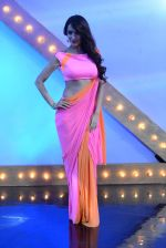 Malaika Arora Khan stunning in a shivan naresh saree in Mumbai on 25th Jan 2014 (62)_52e4b44c9d86f.JPG