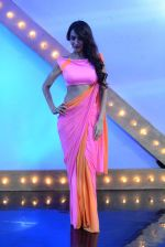 Malaika Arora Khan stunning in a shivan naresh saree in Mumbai on 25th Jan 2014 (63)_52e4b44d03cbe.JPG