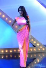 Malaika Arora Khan stunning in a shivan naresh saree in Mumbai on 25th Jan 2014 (67)_52e4b44e932d2.JPG