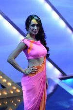 Malaika Arora Khan stunning in a shivan naresh saree in Mumbai on 25th Jan 2014 (68)_52e4b44eed7a1.JPG