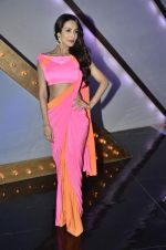 Malaika Arora Khan stunning in a shivan naresh saree in Mumbai on 25th Jan 2014 (7)_52e4b438957d7.JPG