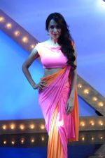 Malaika Arora Khan stunning in a shivan naresh saree in Mumbai on 25th Jan 2014 (71)_52e4b45013c02.JPG