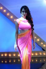 Malaika Arora Khan stunning in a shivan naresh saree in Mumbai on 25th Jan 2014 (72)_52e4b4506bbeb.JPG