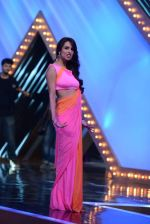 Malaika Arora Khan stunning in a shivan naresh saree in Mumbai on 25th Jan 2014 (73)_52e4b450e25cb.JPG