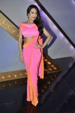 Malaika Arora Khan stunning in a shivan naresh saree in Mumbai on 25th Jan 2014 (8)_52e4b438ee5ea.JPG
