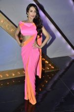 Malaika Arora Khan stunning in a shivan naresh saree in Mumbai on 25th Jan 2014 (9)_52e4b4395437a.JPG