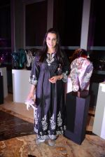 Mana Shetty at Passages art event hosted by Palladium Hotel in Palladium, Mumbai on 26th Jan 2014 (23)_52e5fcbce737a.JPG