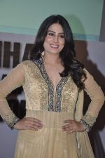 Arjumman Mughal at Ya Rab film music launch in Novotel, Mumbai on 28th JAn 2014 (21)_52e89dea1a245.JPG
