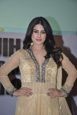Arjumman Mughal at Ya Rab film music launch in Novotel, Mumbai on 28th JAn 2014 (23)_52e89deacd57f.JPG