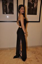 Kainaat Arora at Vikram Bawa Calendar Launch in Mumbai on 31st Jan 2014 (60)_52ec94533f067.JPG