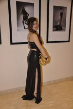 Kainaat Arora at Vikram Bawa Calendar Launch in Mumbai on 31st Jan 2014 (62)_52ec9453f0c67.JPG