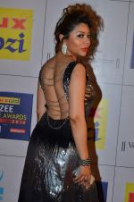 Laila Khan at Zee Awards red carpet in Filmcity, Mumbai on 8th Feb 2014 (167)_52f77c930a15e.JPG