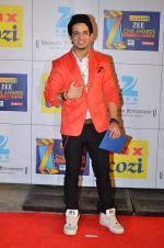 at Zee Awards red carpet in Filmcity, Mumbai on 8th Feb 2014 (100)_52f77a63c33cc.JPG