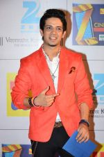 at Zee Awards red carpet in Filmcity, Mumbai on 8th Feb 2014 (104)_52f77a6548934.JPG