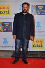 at Zee Awards red carpet in Filmcity, Mumbai on 8th Feb 2014 (133)_52f77a660b34d.JPG