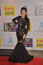 at Zee Awards red carpet in Filmcity, Mumbai on 8th Feb 2014 (2)_52f77a58d3dea.JPG
