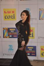 at Zee Awards red carpet in Filmcity, Mumbai on 8th Feb 2014 (3)_52f77a593e043.JPG