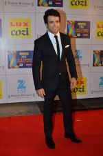 at Zee Awards red carpet in Filmcity, Mumbai on 8th Feb 2014 (327)_52f77a69a288f.JPG